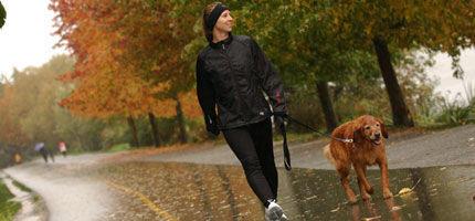 Partnersuche fur menschen mit hund