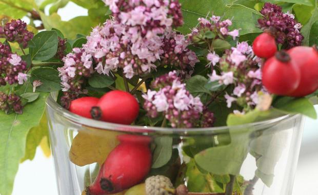 9 Herbst Deko Ideen Aus Der Natur Womanat