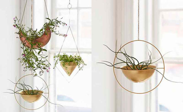 Pflanzen Hängend die hängenden gärten fürs zuhause • woman.at