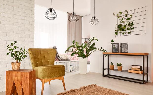 lavendel verteibt spinnen woman at. Black Bedroom Furniture Sets. Home Design Ideas