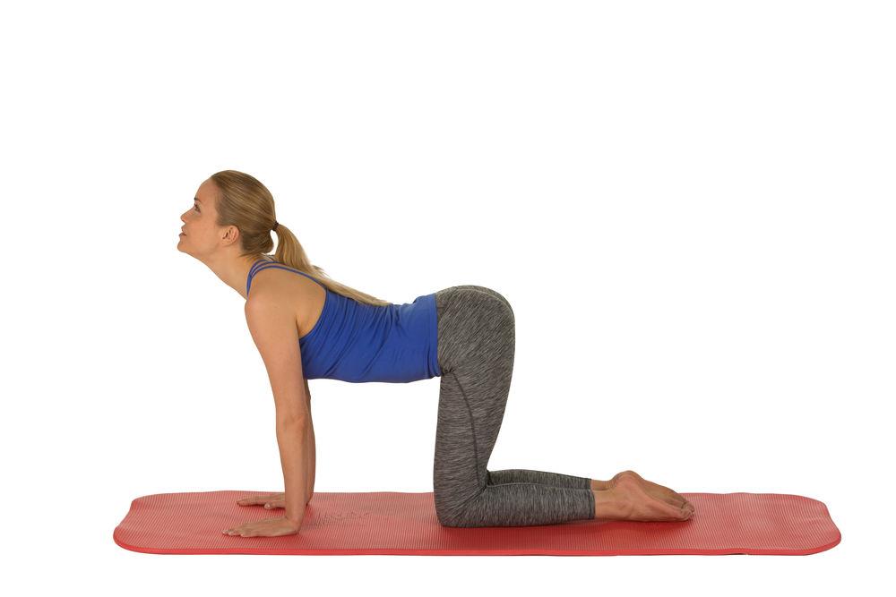 Yoga Kuh