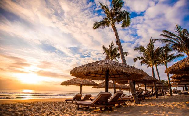 sex im palm beach sex anbieten