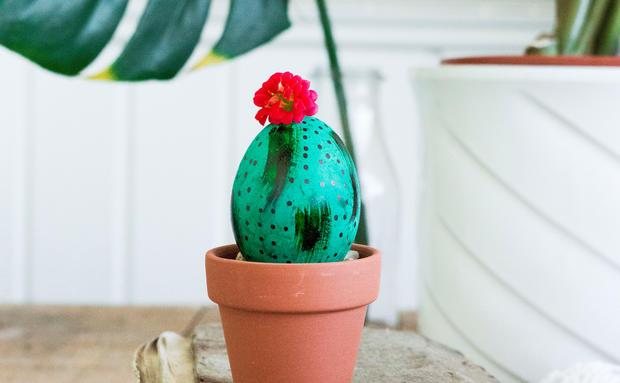 Wir probieren DIY-Trends von Pinterest: Osterei als Kaktus • WOMAN.AT